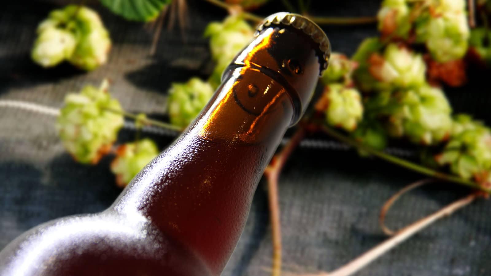 BièreDegustation