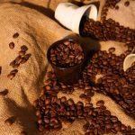 cours de dégustation de café