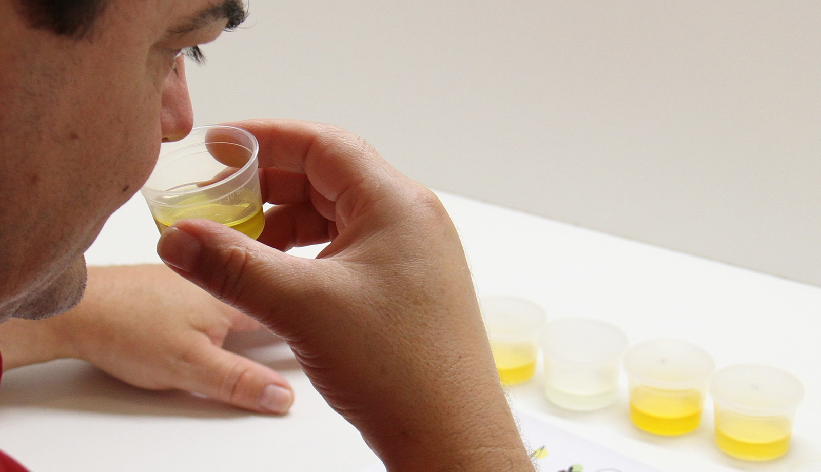 cours de dégustation d'huile d'olive