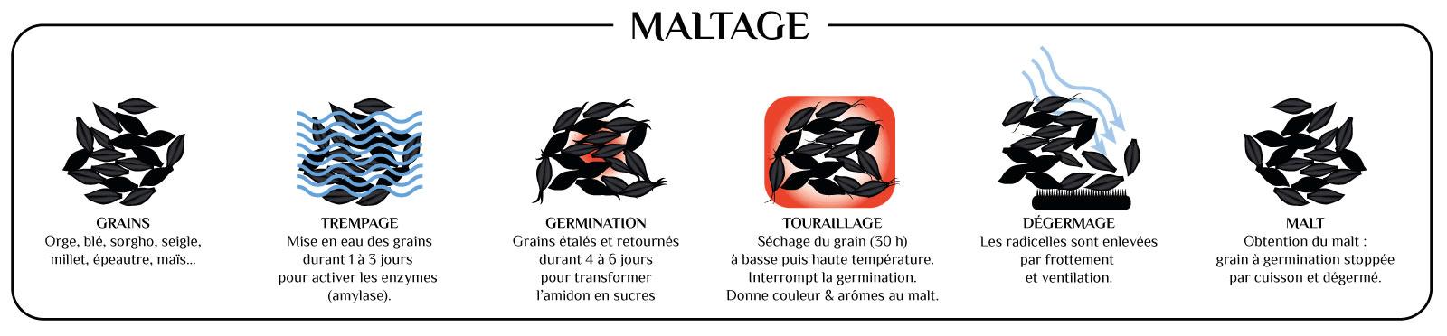 infographie-etapes-maltage