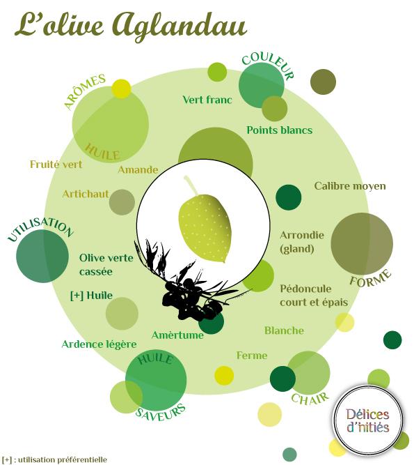 Infographie sur la variété d'olive Aglandau