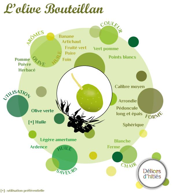 Infographie sur l'olive Bouteillan
