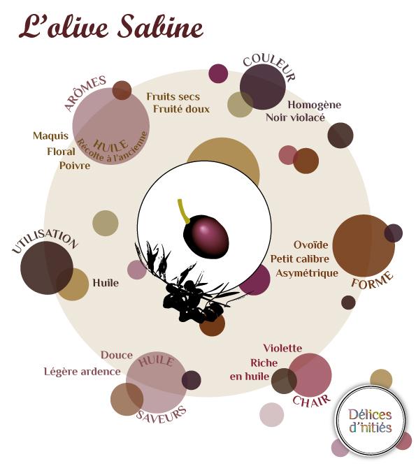Infographie variété olive Sabine